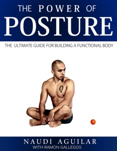 The Power of Posture E-Book von Functional Pattern